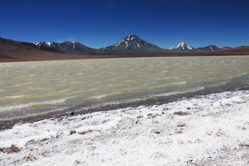 Chili,Laguna Tetia et volcan Lascar.jpg