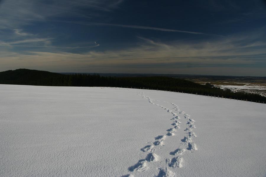 Les volcans d'Auvergne sous la neige loin des pistes balisées
