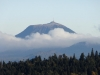 Le Puy de Dôme, arbres et nuages