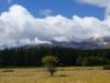 Cratère actif au parc national du Tongariro
