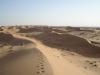 Dunes du Wahiba
